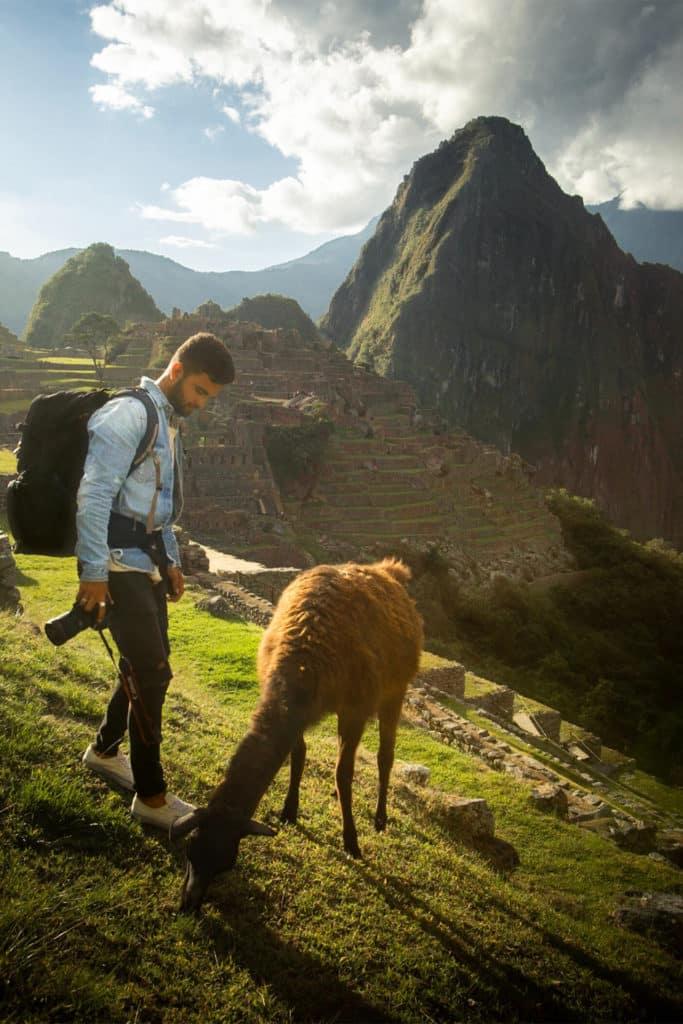 Auquénido en Machu Picchu, 10 lugares imprescindibles que ver en Perú