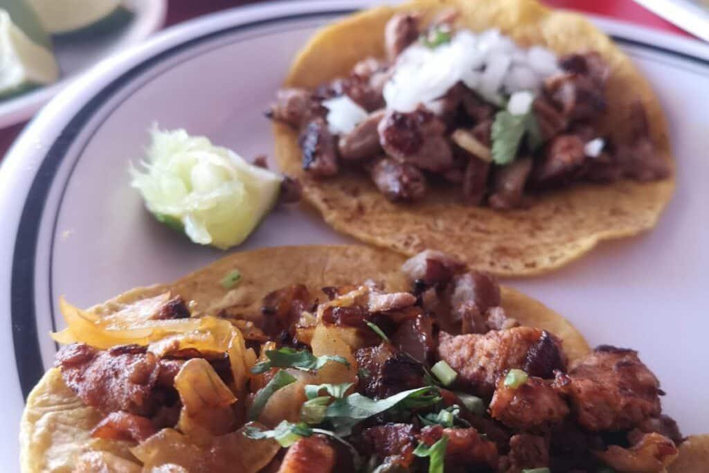 plato tacos carnitas