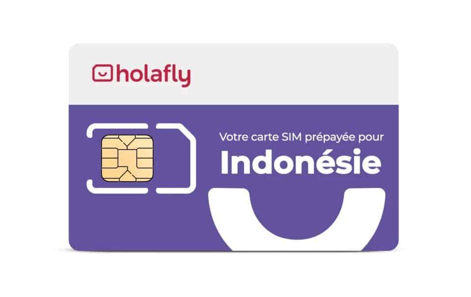 carte sim indonésienne