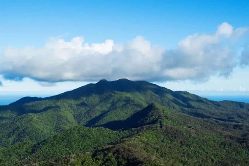 Forêt Selva El Yunque à Porto Rico  Source : Wenhao Ryan en Unspash carte sim prépayée porto rico