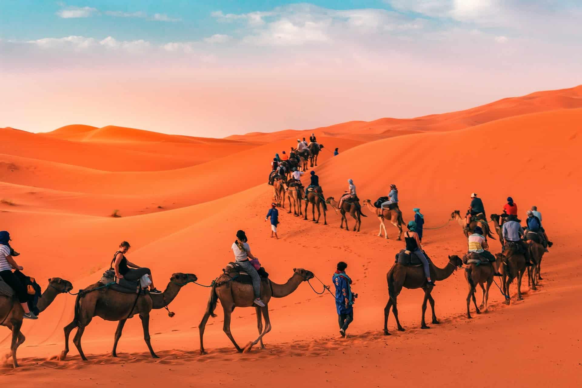 touristes avec des chameaux dans le desert du maroc