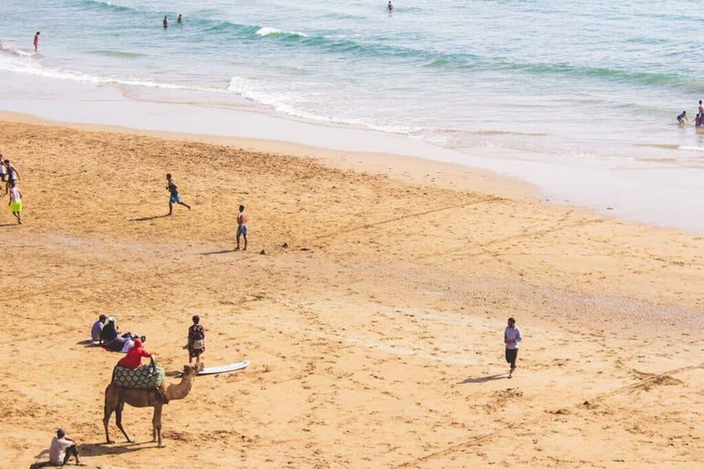 plage au maroc avec des touristes et un chameau